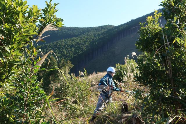 林業体験15日コースの写真3枚目