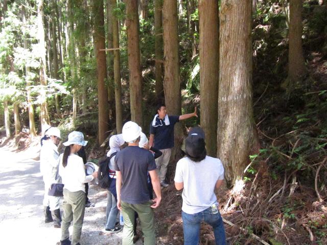 林業体験1日コースの写真1枚目