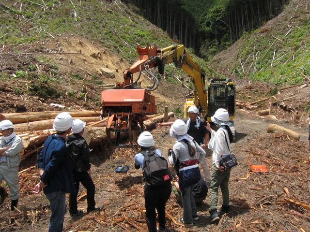 林業体験1日コースの写真2枚目