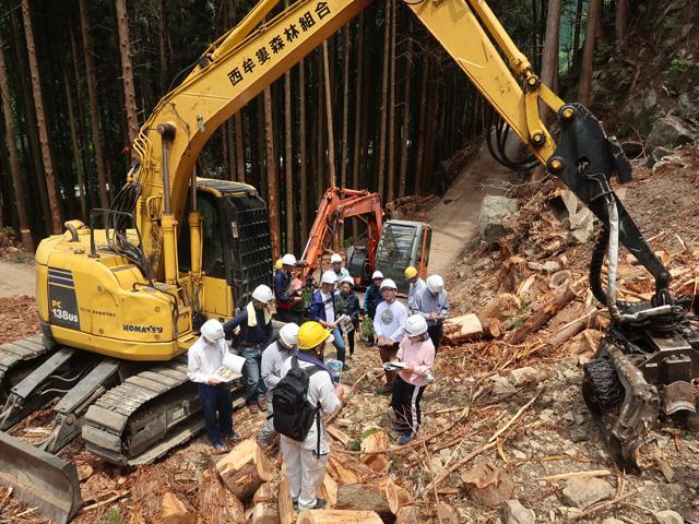 林業体験1日コースの写真5枚目