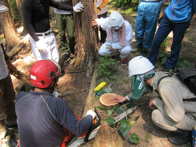 林業体験4日コースの写真4枚目
