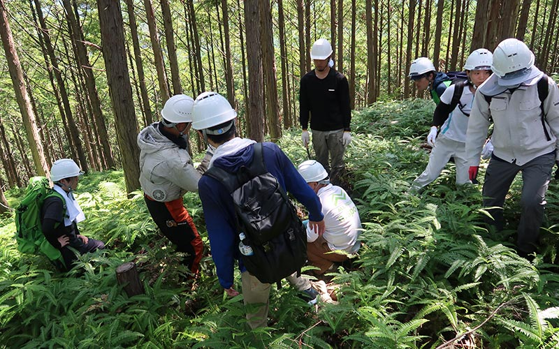 林業就業支援講習