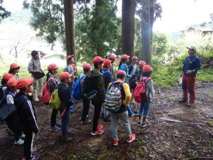 緑育・木育活動              (毎年、都市周辺から小学生を積極的に受け入れて学びの場を設けています)